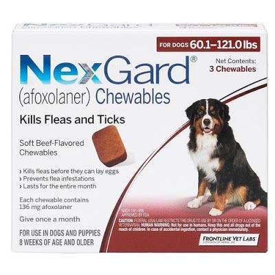 Thuốc uống trị viêm da Nexgard cực kỳ hiệu quả với những chú chó bị viêm da demodex